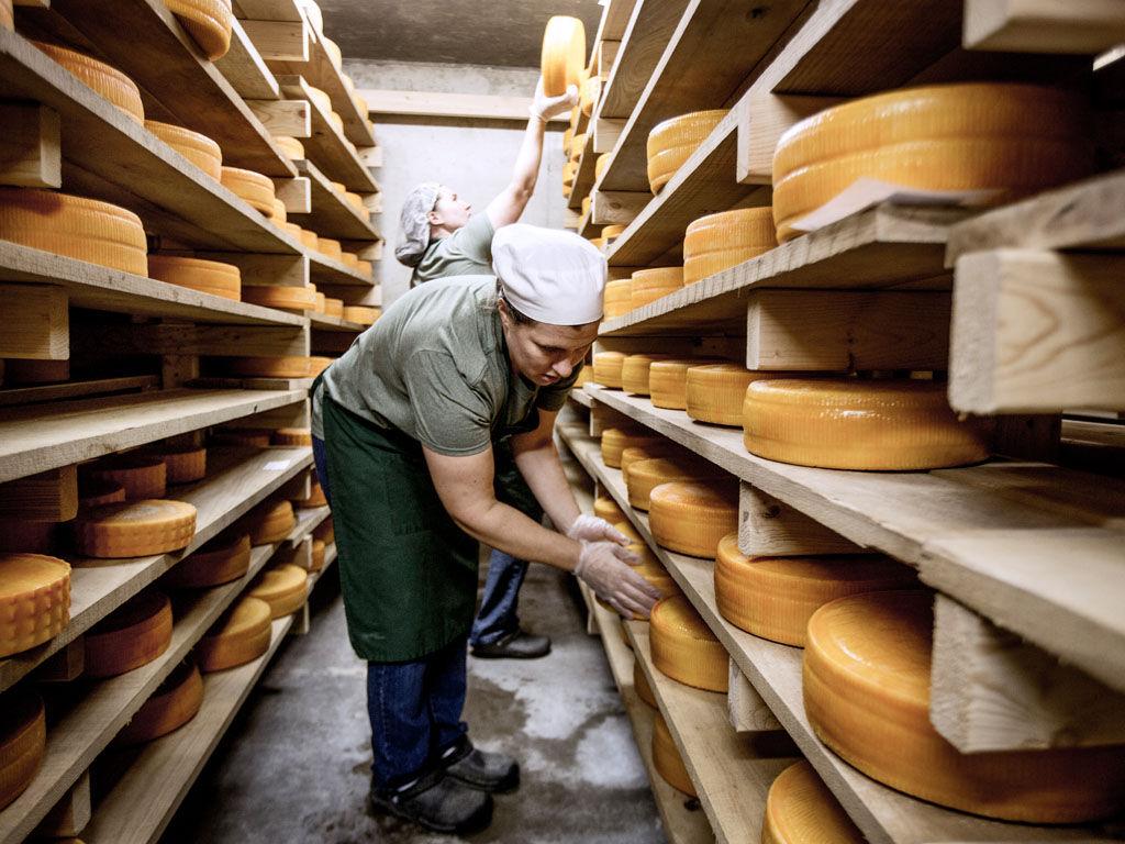 Inside Marcoot Family Creamery Artisan Cheese