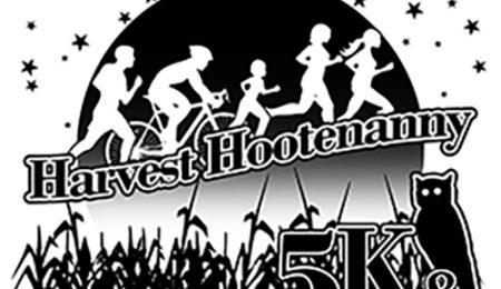 Hootenanny 2018-active